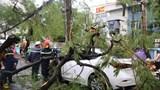 Hà Nội khẩn trương thu dọn cây xanh đổ, gãy trên các tuyến đường