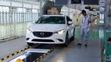 Nới chu kỳ đăng kiểm xe ô tô sản xuất dưới 5 năm